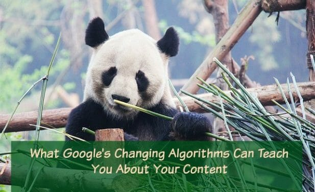 What Do Animals and Algorithms Have to Do With Search Rankings?